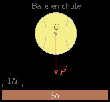 Représentation du poids de la balle