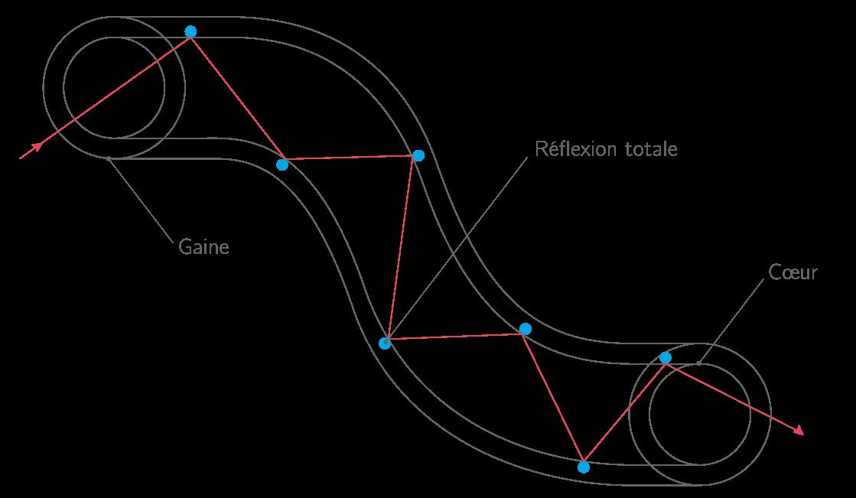 Propagation de la lumière dans une fibre optique