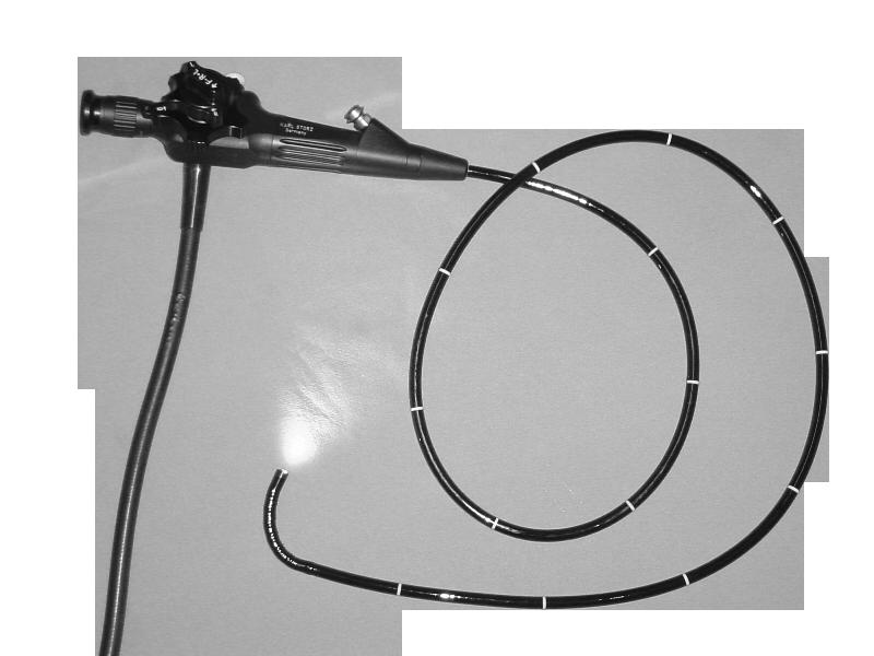 Endoscope souple