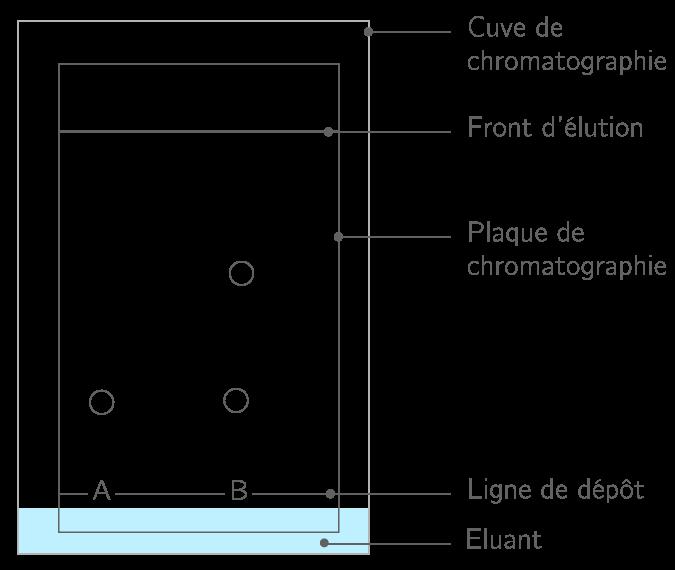 Kartable 2nde physique chimie sp cifique exercices analyser le r sultat d 39 une - Chromatographie sur couche mince ...