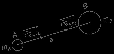 Représentation des forces d'interaction gravitationnelle