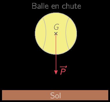 Représentation du poids d'une balle au voisinage de la surface terrestre