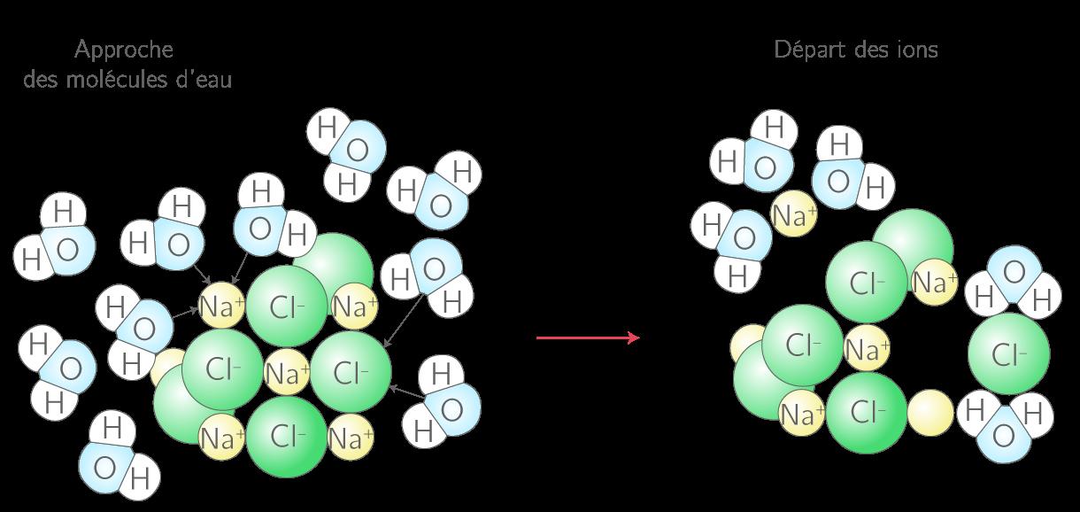 Dissociation des ions sodium et chlorure du sel dans l'eau
