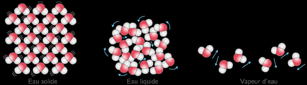 Mouvement des molécules d'eau selon l'état physique