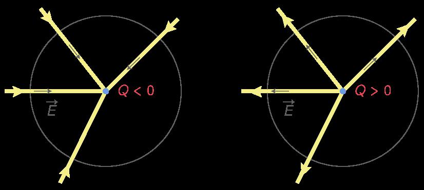 Lignes du champ électrostatique créé par une charge ponctuelle Q