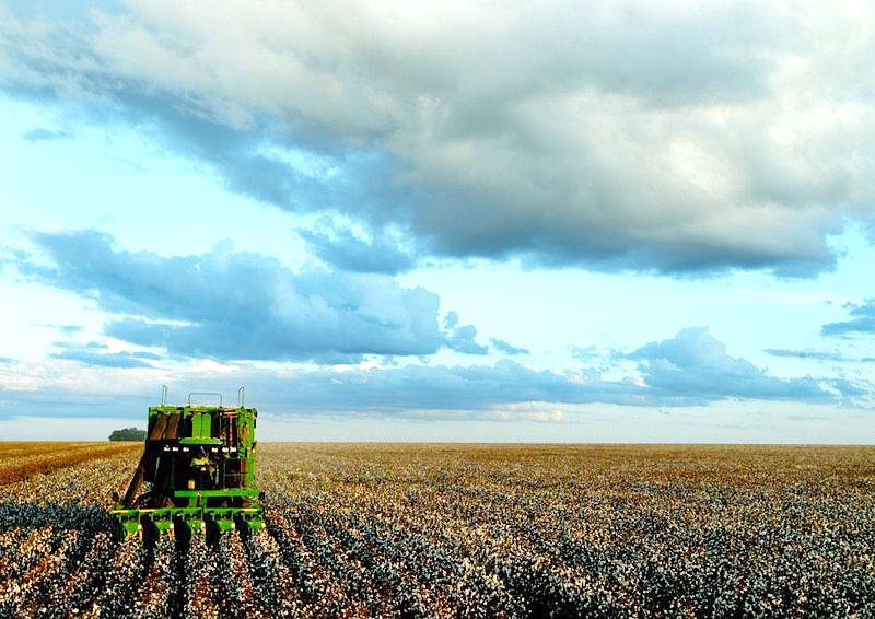 L'agriculture intensive au Brésil