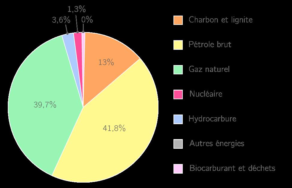 La production d'énergie en 2009 en Russie (Données AIE)