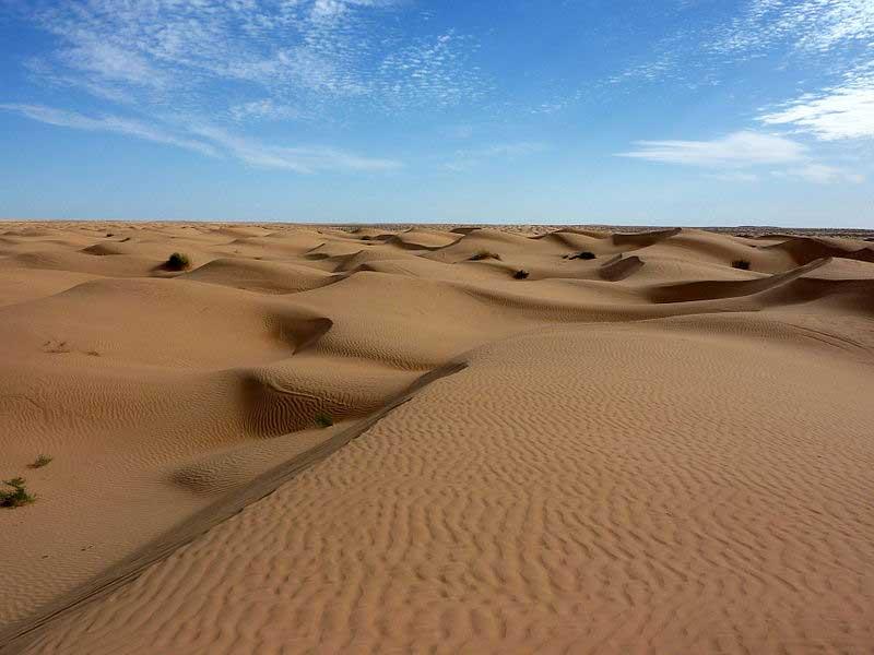 Les dunes de sable représentent 20% de l'espace du Sahara.