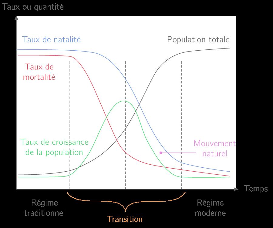 Le modèle de la transition démographique