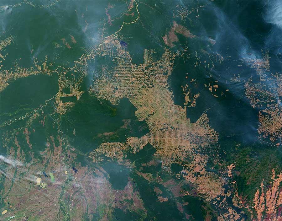 Les fronts pionniers agricoles en Amazonie