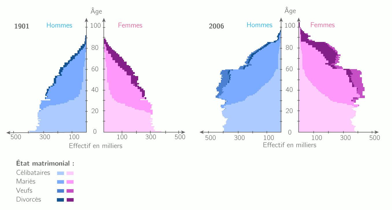 Pyramide des âges de 1901 à 2006