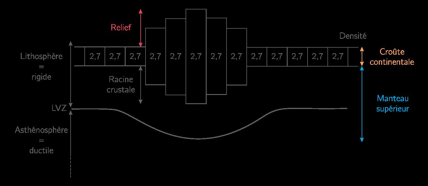 Isostasie et racine crustale selon le modèle d'Airy