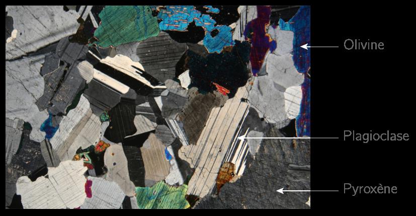 Observation au microscope polarisant d'une lame mince de gabbro