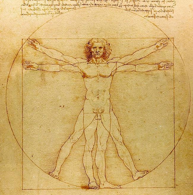 Léonard de Vinci, L'Homme de Vitruve, 1492