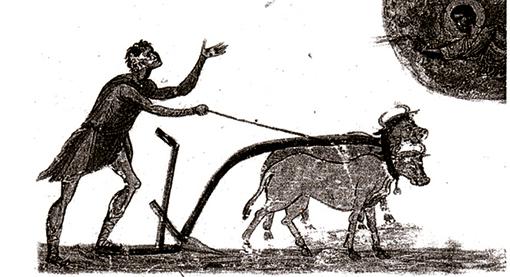 Un araire au XIe siècle