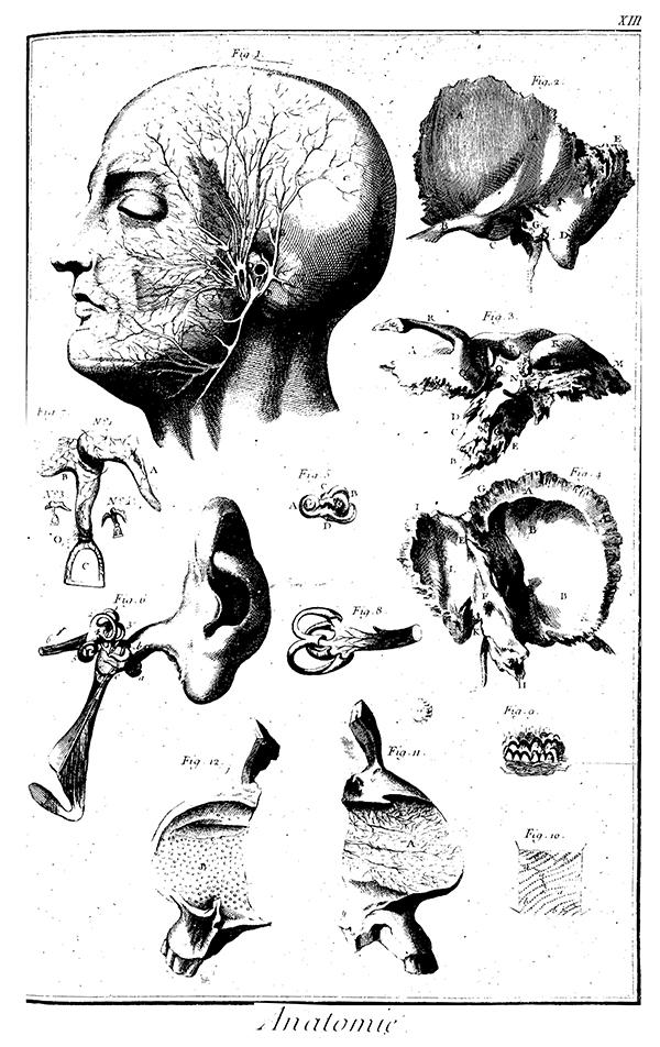 Planche de l'Encyclopédie de Diderot et d'Alembert