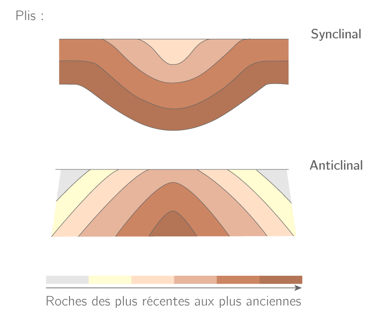 Pli synclinal et pli anticlinal