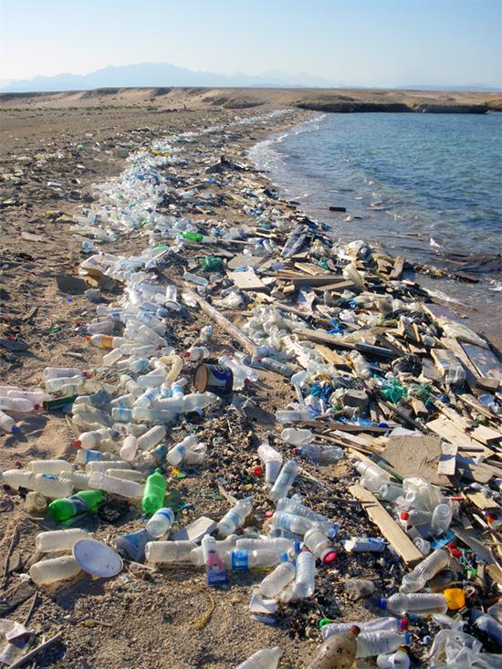 Déchets plastiques charriés sur les côtes en Égypte