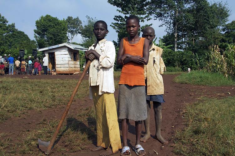 Agriculture vivrière en Ouganda