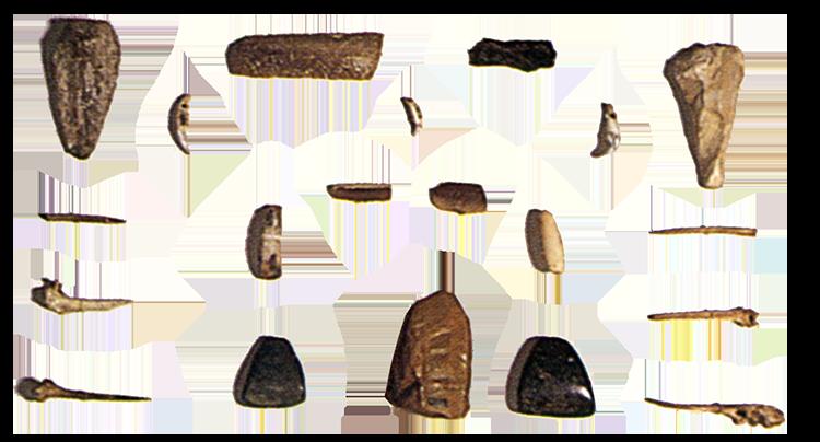 Outils d'hommes préhistoriques retrouvés à Malte