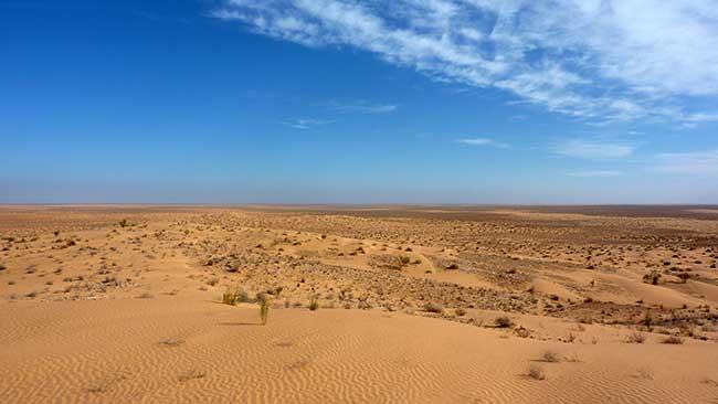 Le désert du Sahara, plus grand désert chaud de la planète