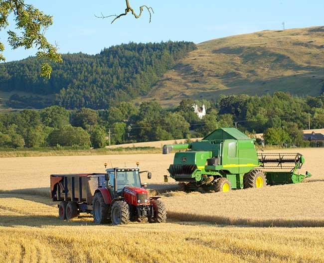 Agriculture intensive en Écosse