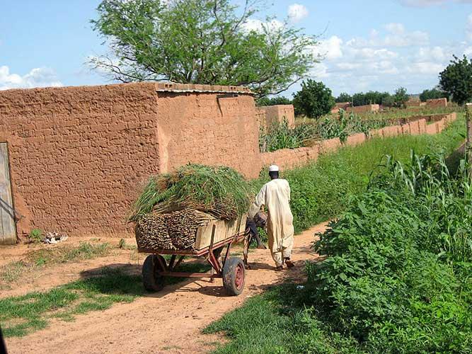 Village au Niger