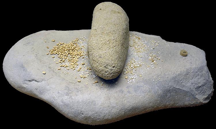 Meule et broyeur à céréales du Néolithique à Orgnac en France