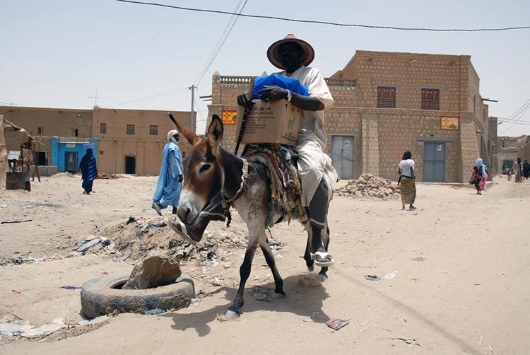 Homme sur un âne à Tombouctou