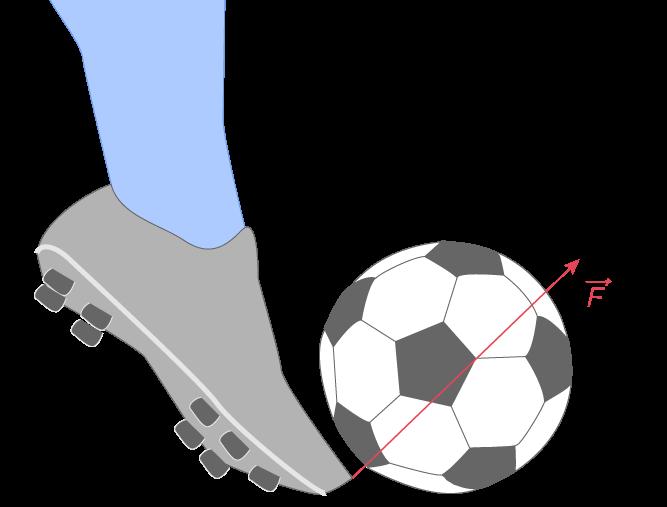 Représentation de la force \(\displaystyle{\overrightarrow{F}}\) que le footballeur exerce sur le ballon