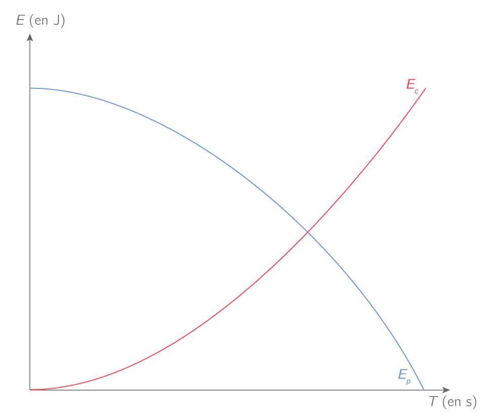Variations des énergies cinétique et potentielle de pesanteur lors de la chute d'une balle