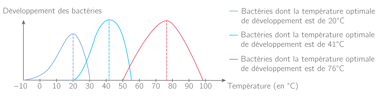 Développement de différents types de bactéries en fonction de la température du milieu