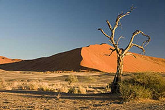 Photo du désert du Namib en Namibie