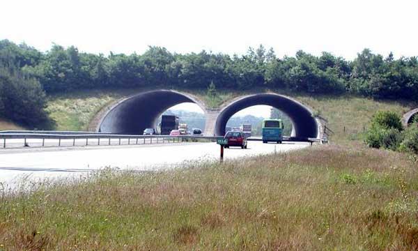 """Écoduc de type """"Passage supérieur"""" enjambant les 4 voies de l'A50 aux Pays-Bas"""