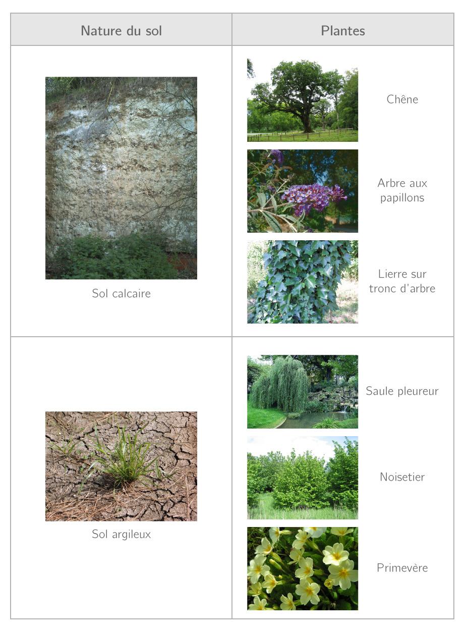 Tableau présentant l'influence du type de sol sur le peuplement