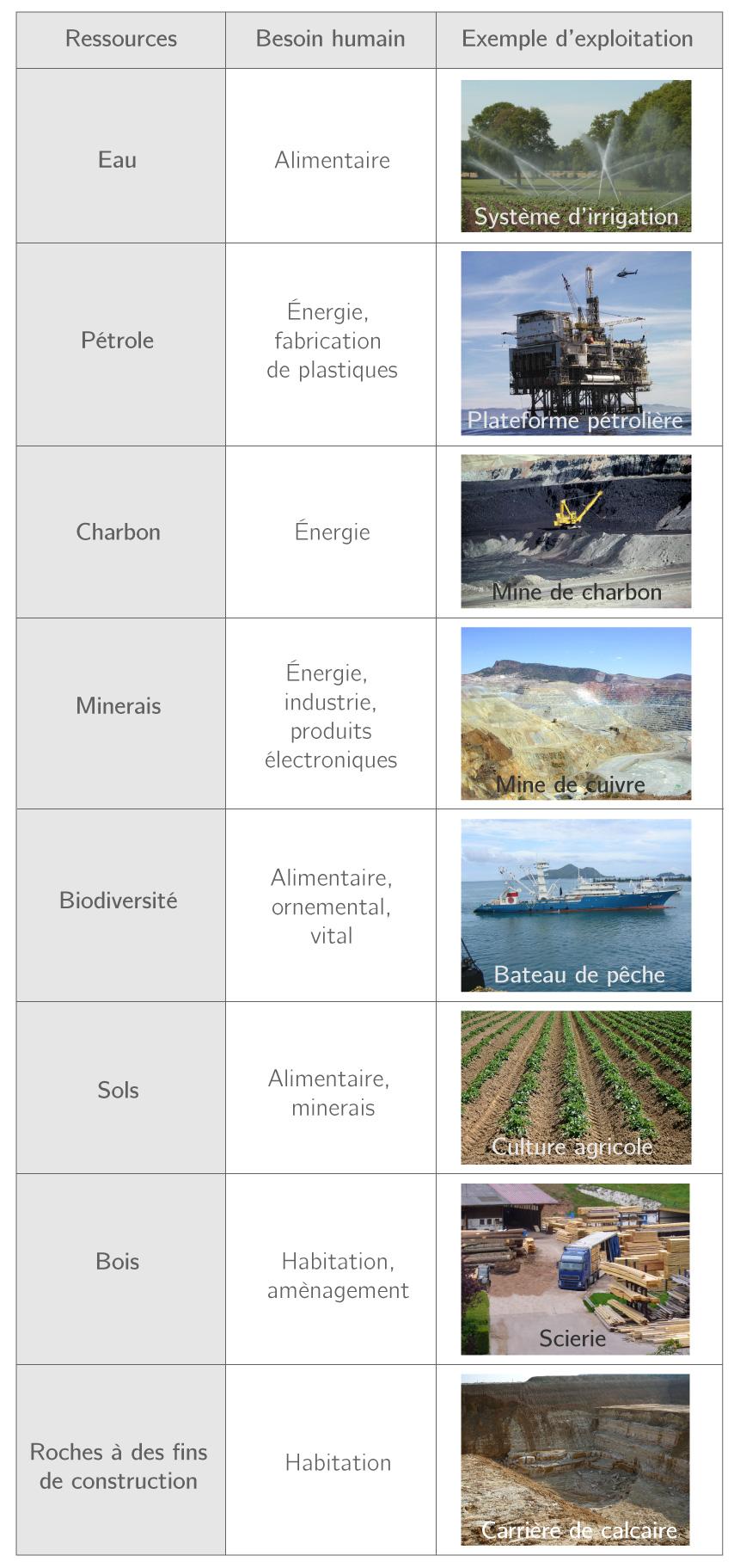 Tableau présentant des exemples de ressources naturelles exploitées par l'Homme pour répondre à différents besoins