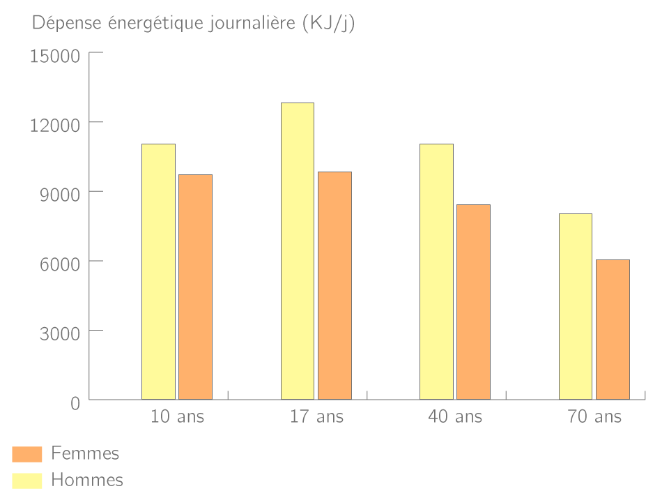 Les dépenses énergétiques en fonction du sexe et de l'âge