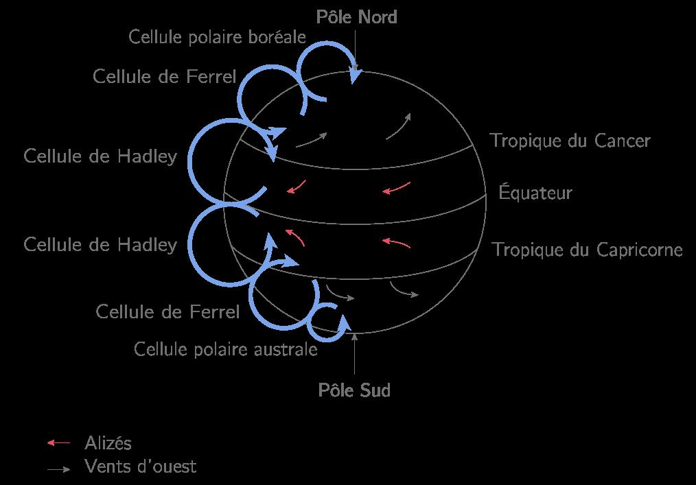 Circulation générale des masses d'air avec les six cellules de convection