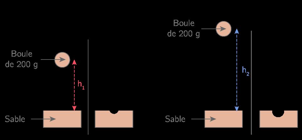 Influence de la hauteur sur l'énergie potentielle de pesanteur