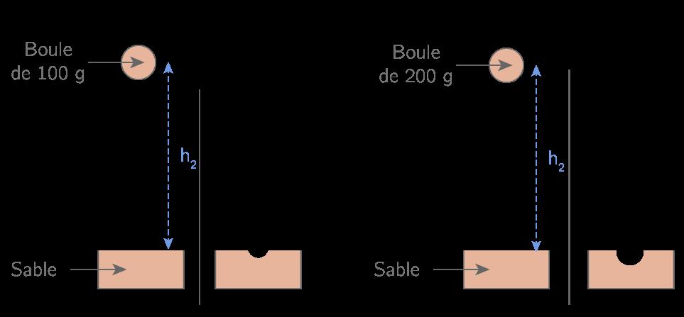 Influence de la masse sur l'énergie potentielle de pesanteur
