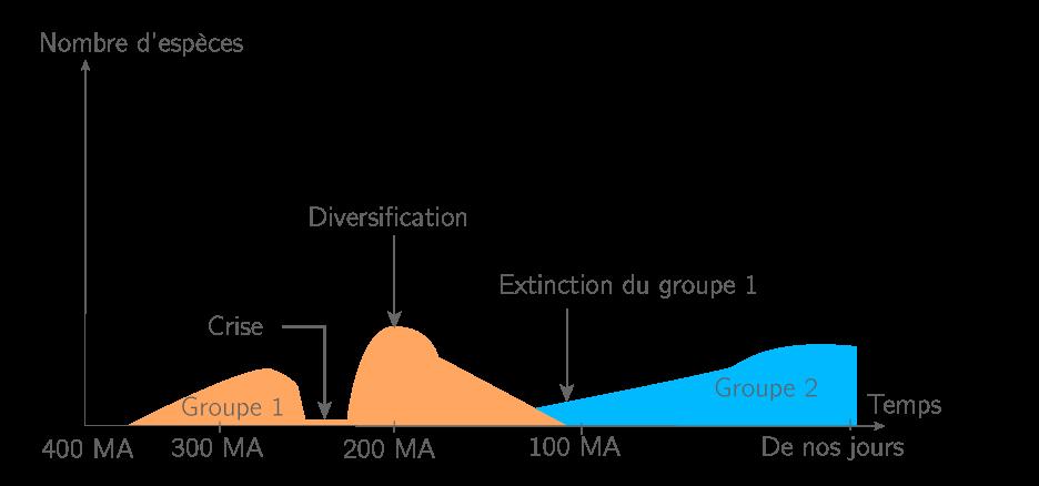 Crises biologiques et périodes de diversification