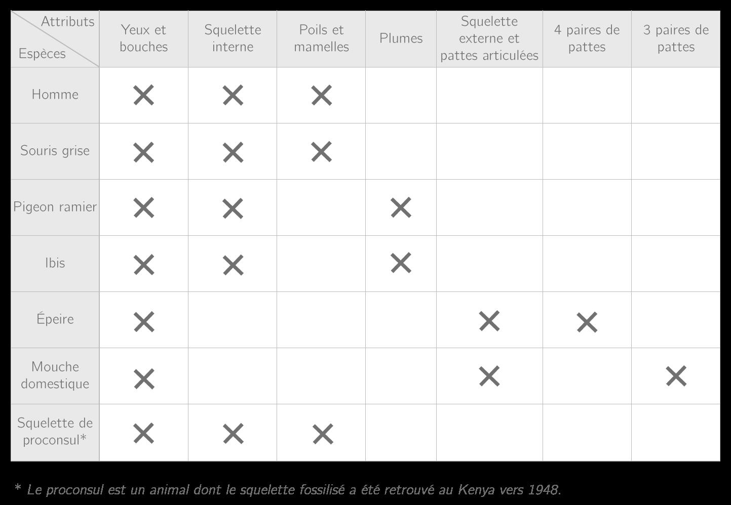 Tableau présentant les attributs des animaux étudiés