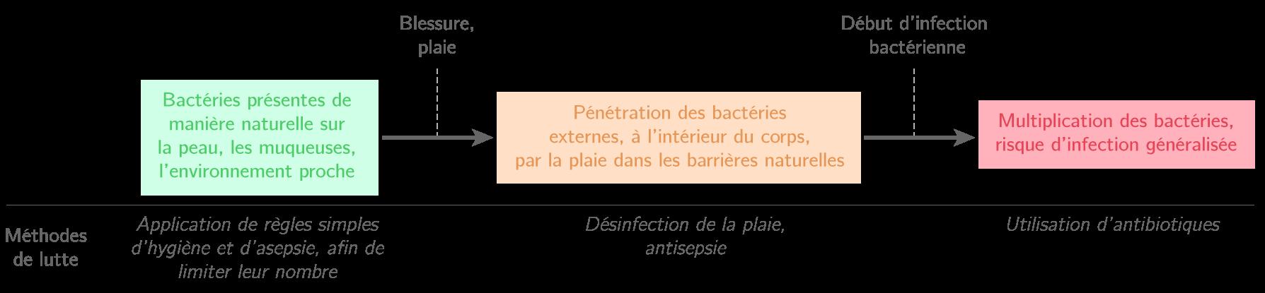 Prévention et lutte contre les micro-organismes pathogènes