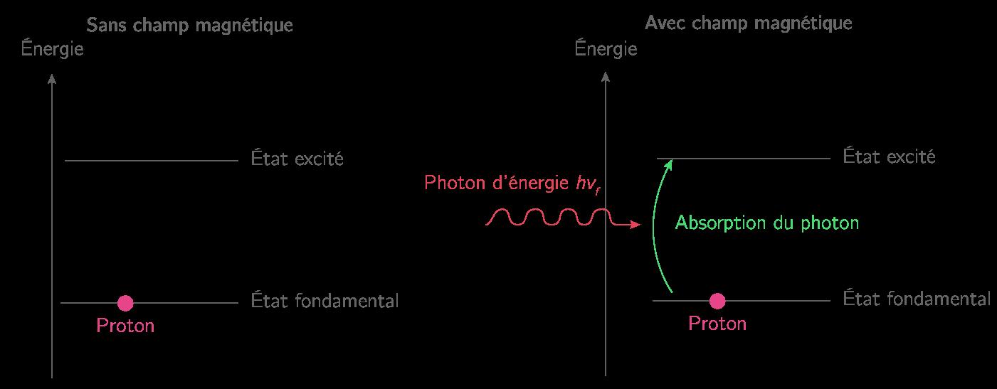 Le transfert de proton
