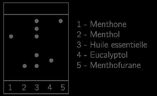 Chromatographie de l'huile essentielle obtenue après hydrodistillation des feuilles de menthe