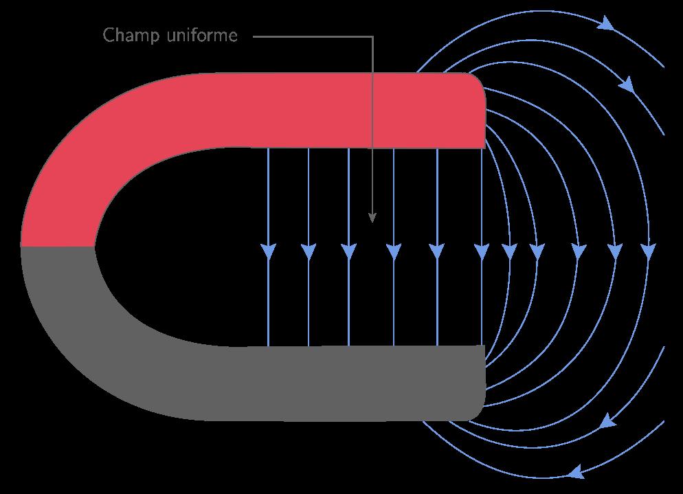 Dans l'entrefer d'un aimant en U, le champ magnétique est uniforme.