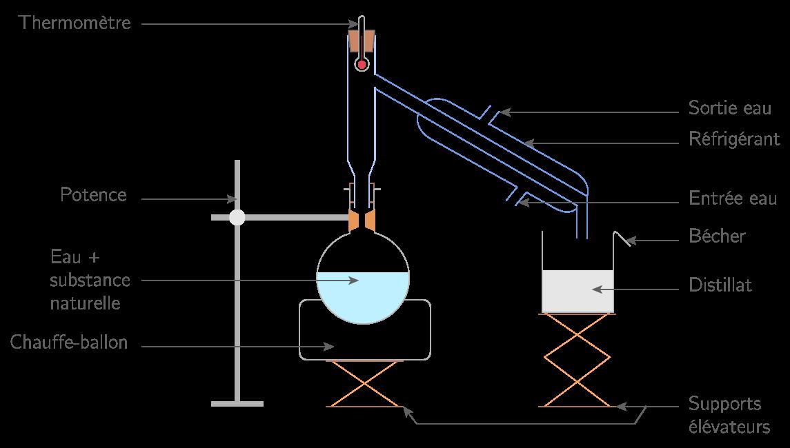 Montage d'hydrodistillation