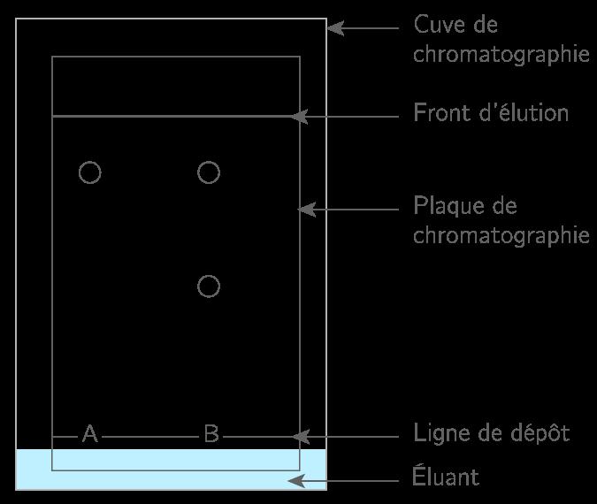 analyser un chromatogramme