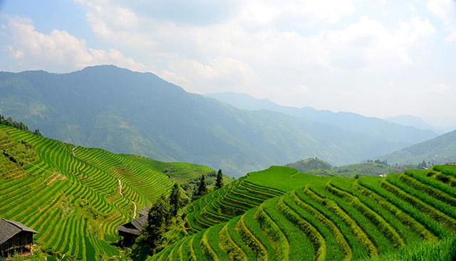 Province de Guangxi (Chine)