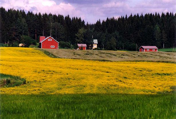 Lappeenranta (Finlande)